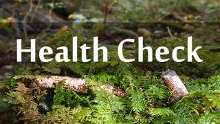 ご参加前の健康チェック