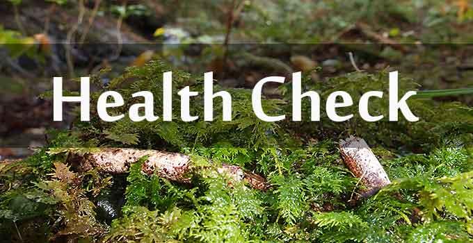 健康チェック