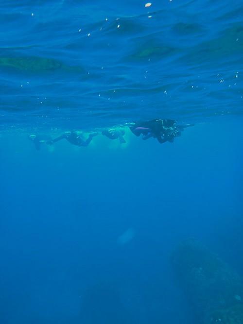 みんなで沖まで泳いでいって