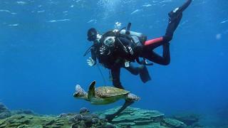 うっすら曇りの八丈島、サンゴの広がる底土で体験ダイビング