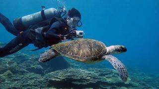 夏の青空広がる八丈島、穏やかな底土で体験ダイビング
