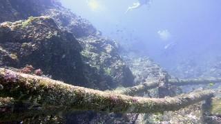 青空広がり暑さの続く八丈島、パシャつきだした底土と垂土でダイビング