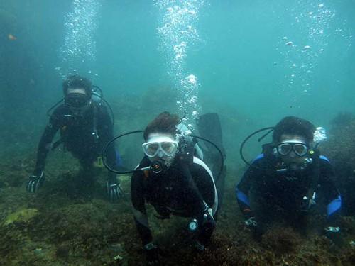 タイドプールで体験ダイビング
