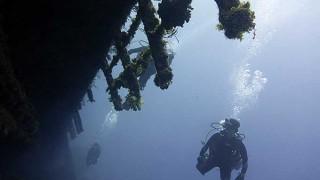 青空広がり日差しも強い八丈島、西側ボートと八重根でダイビング