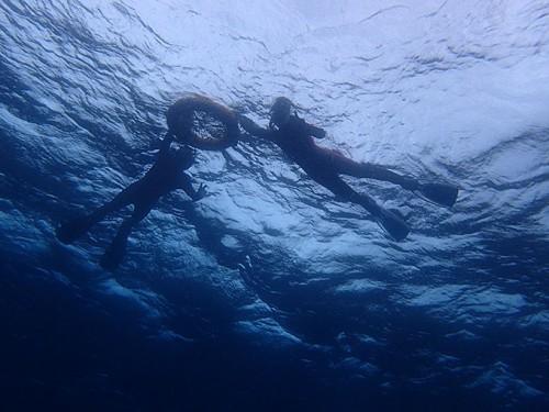 沖まで出れば水はそこそこ綺麗な感じで