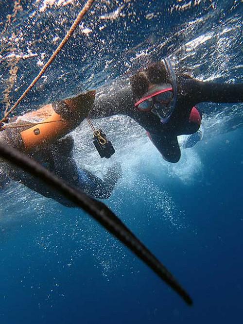 パシャつく海でも沖まで出ていき