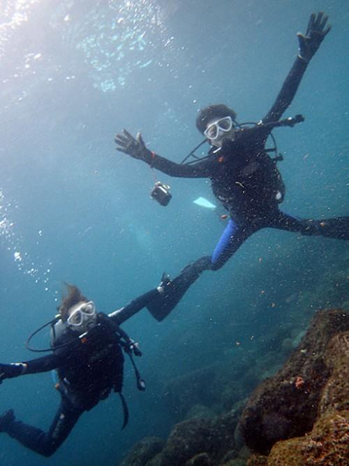 八重根の海を楽しみながら潜れたり