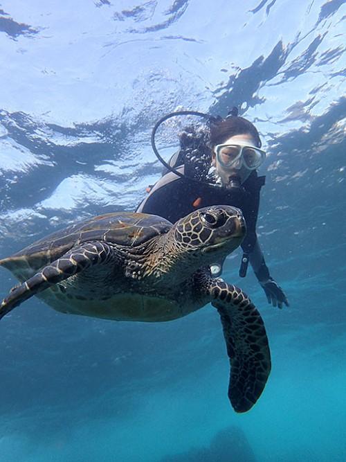 カメと見つつ沖まで泳いでいきまして