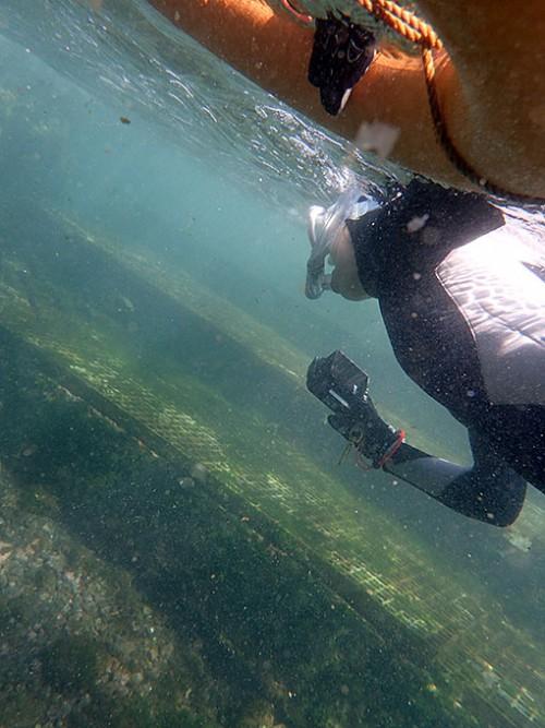 浅場に集まる魚を見に行って