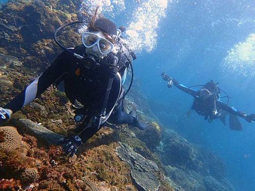 底土の海を楽しんで