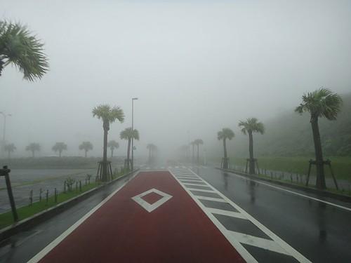 午前中の空港通り