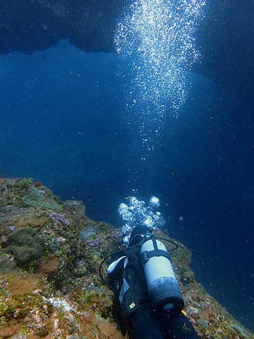 沖でアーチも見られたり