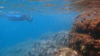 青空次第に広がってきていた八丈島、凪な八重根でシュノーケリング