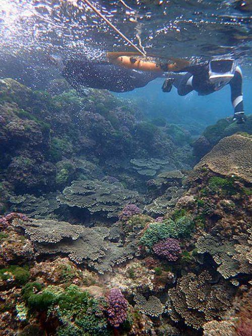 岩場を抜けて沖まで泳ぎ