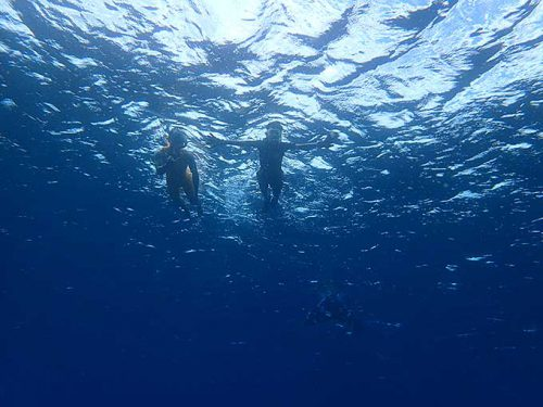 水も綺麗な夏の海