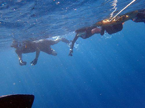 みんなで泳いで沖まで行って