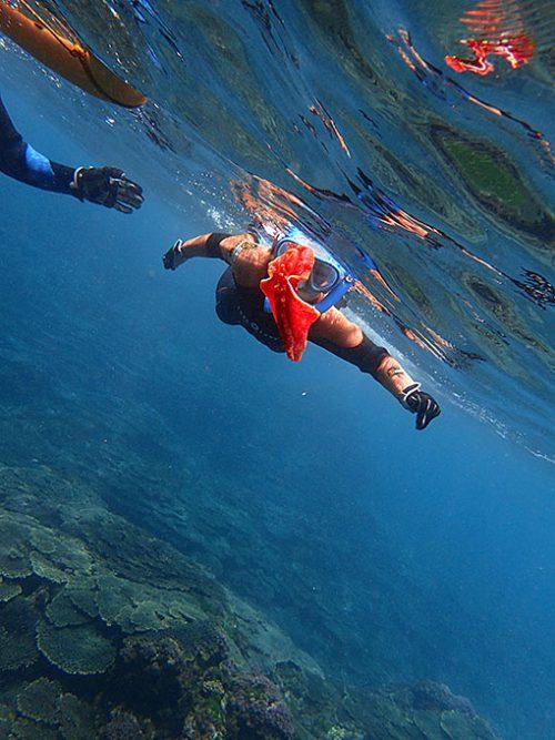 うねうね泳ぐミカドウミウシ