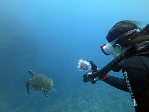 カメと泳いで写真も撮って