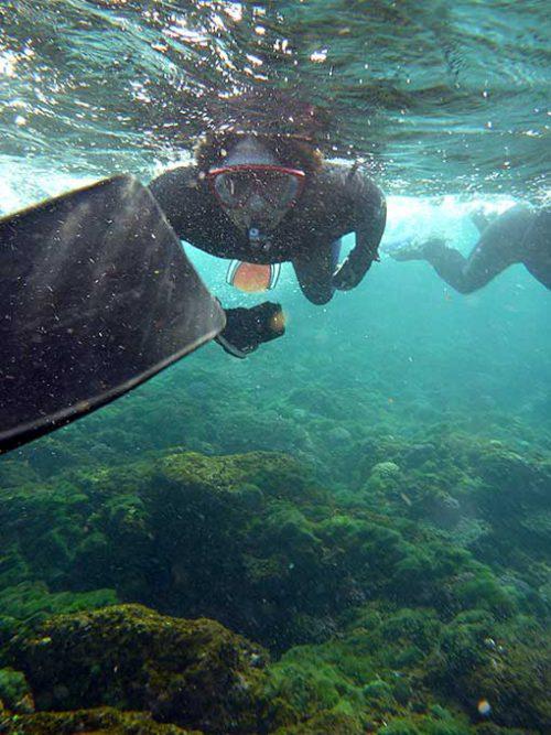 浅場を抜けて沖まで泳ぎ