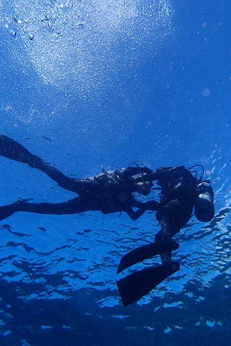 水面浮いて海にゆっくり慣れていき