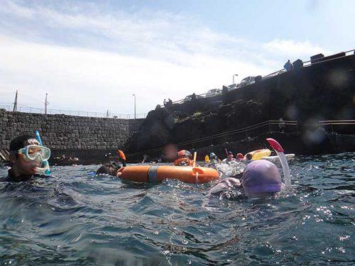 タイドプールで海に慣れ