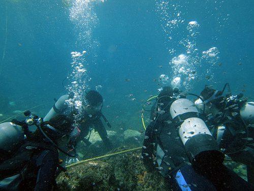 うねりはあるが魚を見つつ海に慣れ