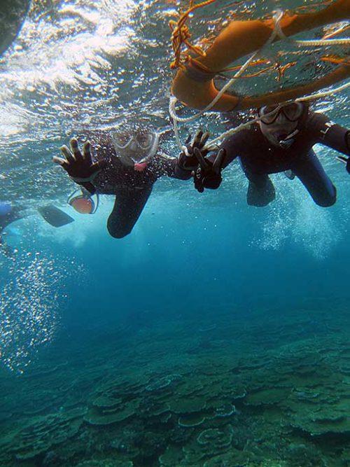 サンゴの海を泳いで周り