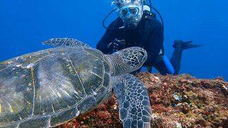 暑さも続く八丈島、沖出るとうねりもあった底土で体験ダイビング