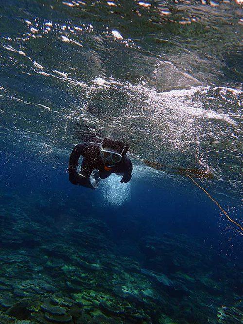 泳いで浅場を抜けていき