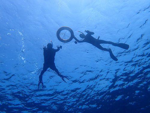 黒潮あたって水も綺麗な海の中