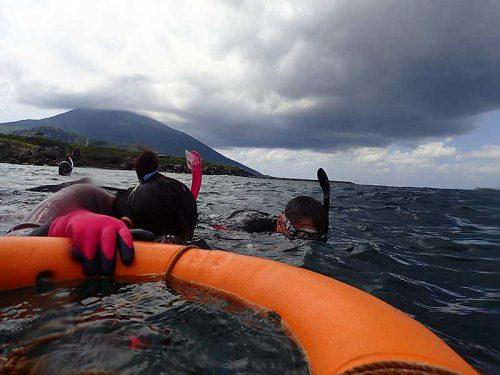 沖をのんびり泳いで周り