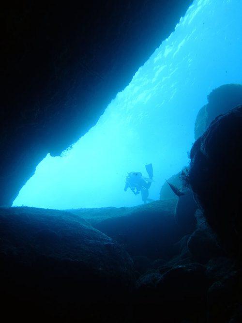 水中トンネル入ってみたり