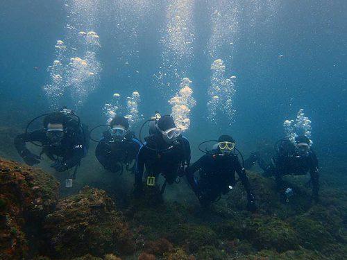 みんなで八重根で体験ダイビング