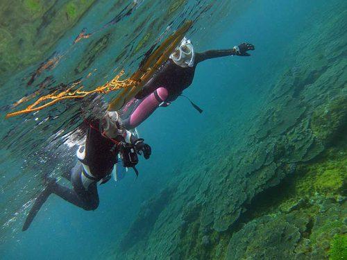 サンゴの広がるちょっと沖