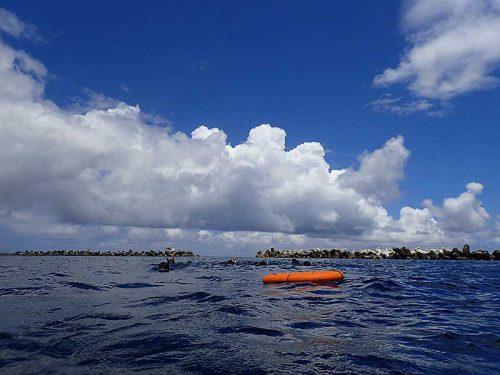 青空広がる底土の海で