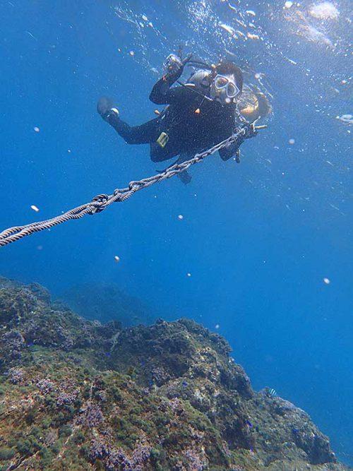 浮き輪とロープにつかまって沖まで泳いで行きまして