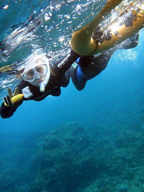 サンゴ広がる海を泳いで行って