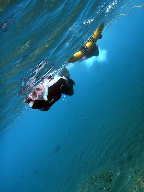 沖に向かって泳いで行って