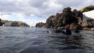 日差しは暖かくもある八丈島、穏やかなタイドプールで【OWD講習】