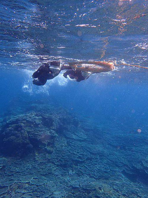 ちょっと沖まで泳いで出ていき