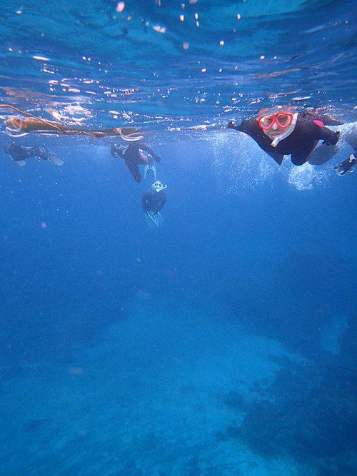 みんなで泳いで底土を周り