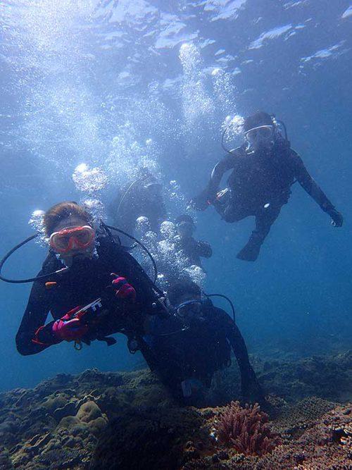 浅場で海に慣れつつ泳いで沖まで出て行って
