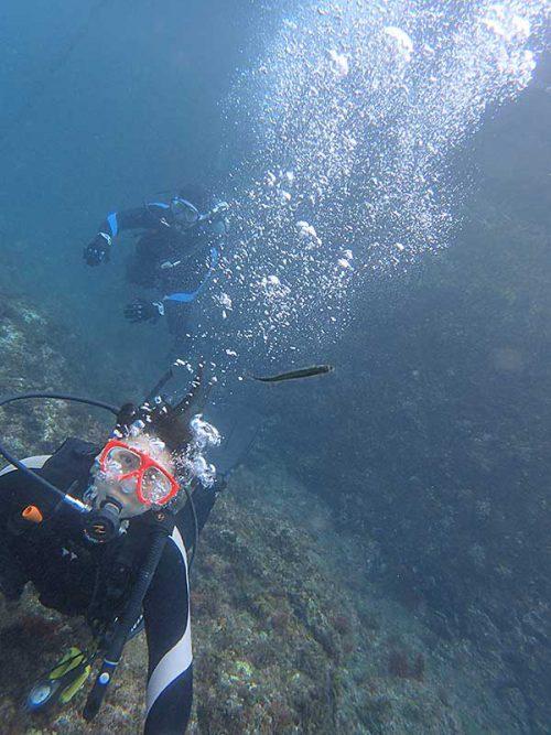 湾内で魚も見つつ海に慣れ