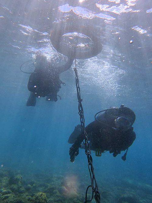 浮き輪に掴まり沖まで泳ぎ