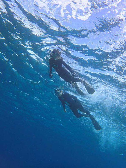 底土の海をグルッと泳いで周っていって