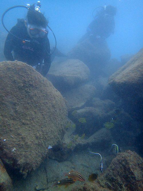岩陰には色々魚も集まっていて