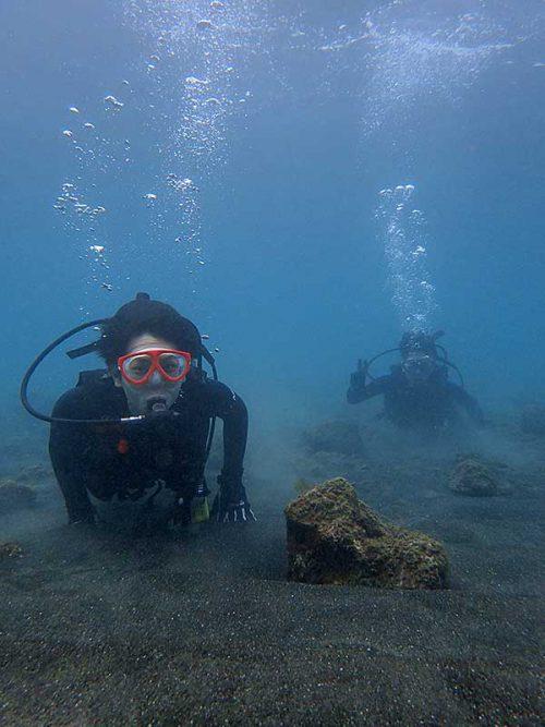 浅場の砂地を泳いでいって