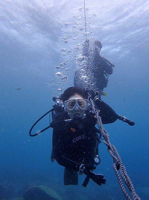 潜れる深さで泳いで周り
