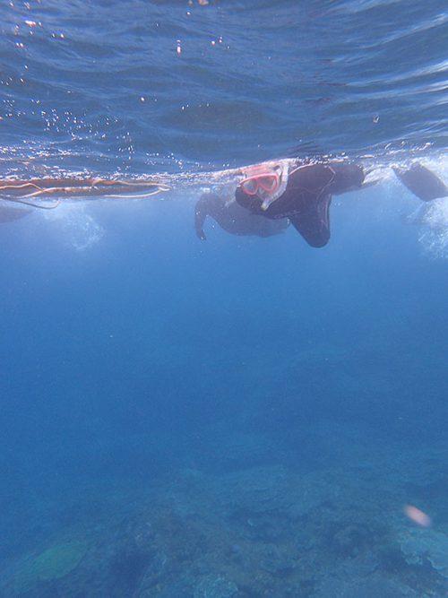 泳いでちょっと沖まで出て行って