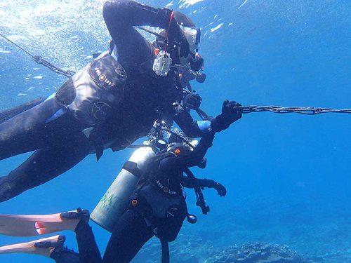 ウミガメ探しに沖まで泳ぎ